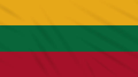 Lithuania flag waving cloth background, loop Animation