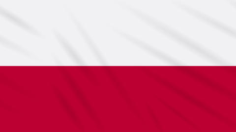 Poland flag waving cloth background, loop Animation