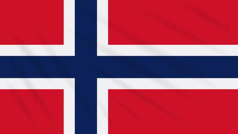 Norway flag waving cloth background, loop Animation