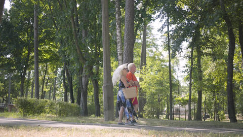 Happy mature couple walking in the park together. Elegant senior woman holding Footage