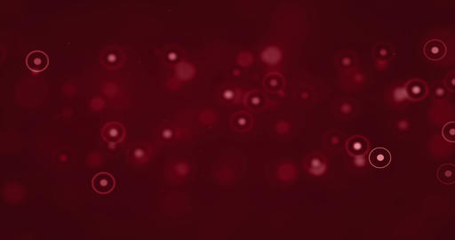 abstract christmas gradient red background with red bokeh circles flowing, valentine day love Footage