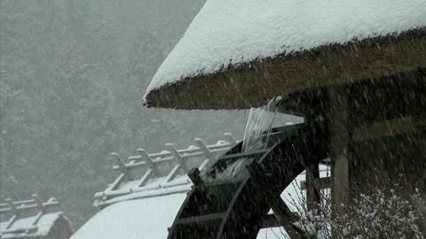 冬 西湖癒しの里 02 ビデオ