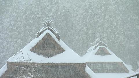 冬 西湖癒しの里 09 ビデオ