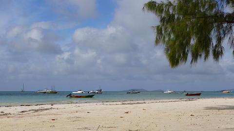 Tropical beach of Anse Volbert, Seychelles Live Action