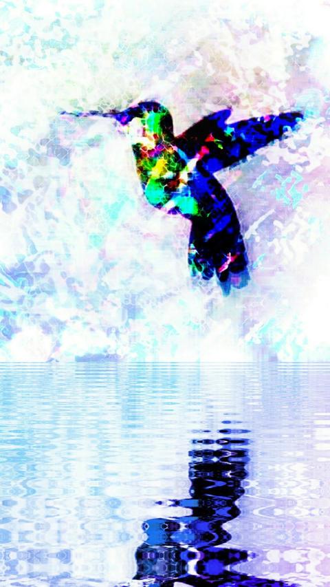 水の上ではばたくハミングバード CG動画