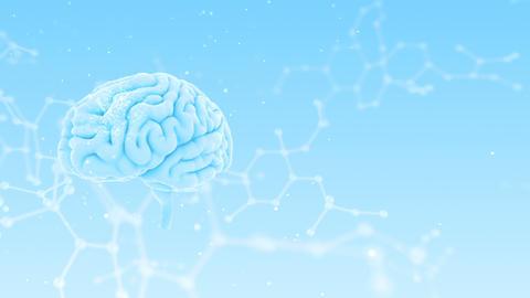 Brain Head 19 3 Molecular A2bW 4k CG動画