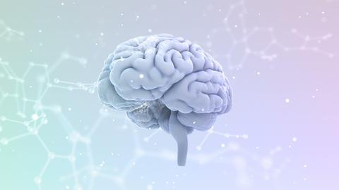 Brain Head 19 3 Molecular B1bW 4k Animation