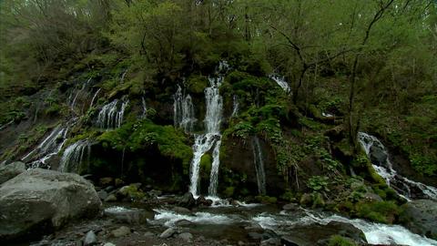吐竜の滝 Footage