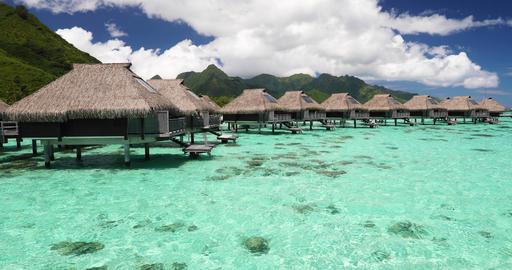 Luxury beach travel vacation in Tahiti - Tourist enjoying paradise holiday Footage