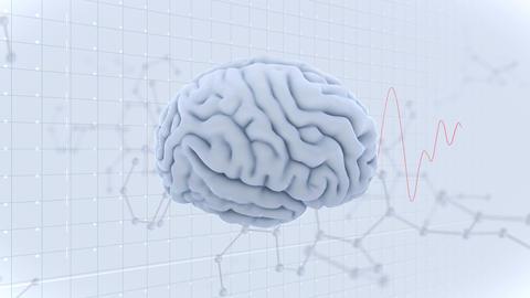 Brain Head 19 3 Molecular B1gW 4k Animation