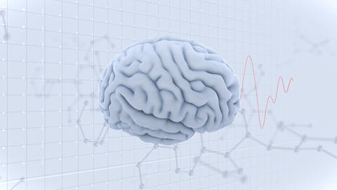Brain Head 19 3 Molecular B1gW 4k CG動画