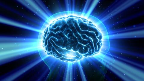 Brain Head 19 3 B1bB 4k CG動画