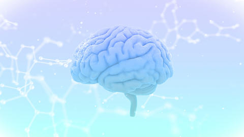 Brain Head 19 3 Molecular C1bW 4k Animation