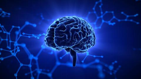 Brain Head 19 3 Molecular D1gB 4k Videos animados
