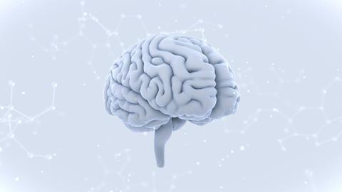 Brain Head 19 3 Molecular D1bW 4k CG動画
