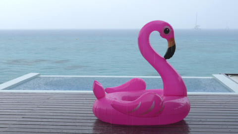 Rain on Vacation - funny video of flamingo float by luxury pool while raining Footage