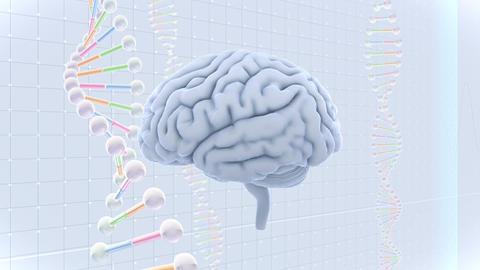 Brain Head 19 3 DNA C1gW 4k Animation