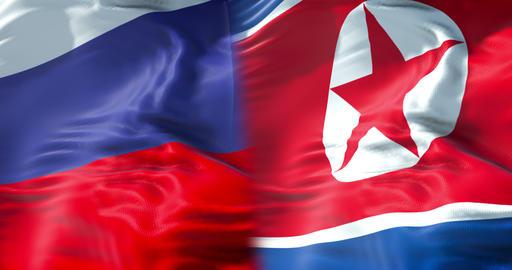 half north korea flag and half russia federation flag,… Stock Video Footage