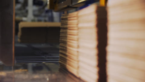 production line transports boxes cardboard in workshop Live Action