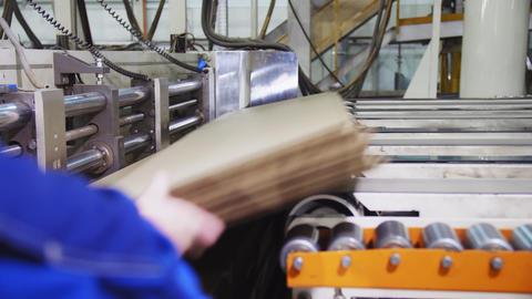 worker controls line transporting cardboard in workshop Footage