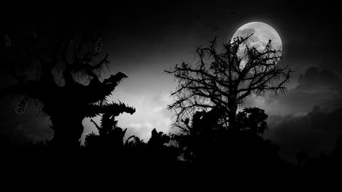 Spooky Moon (3) Animation