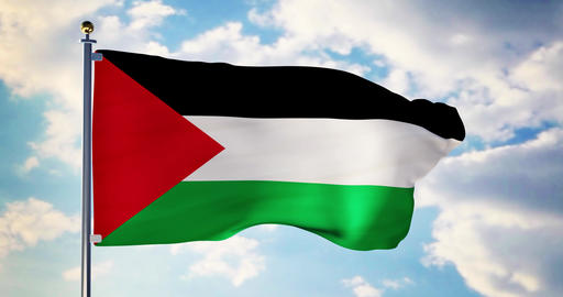 Palestinian flag waving in the wind shows Palestine…, Stock Animation