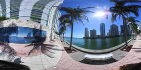 360 vr video of a woman walking in Miami Riverwalk on a sunny day VR 360° Video