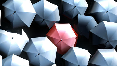 Red Umbrella Wades Through a Flow of Black Umbrellas in the Thunderstorm Animation