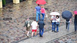 People closeup under umbrellas in rain at old town market square, Lviv Ukraine Footage