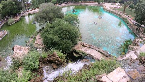 Detailed View Of The Beautiful Waterfalls ライブ動画