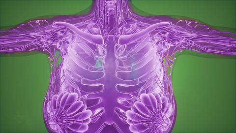 Mammogram radio imaging for breast cancer diagnosis Footage