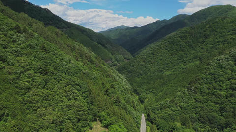 A view overlooking Japan's June mountain ライブ動画