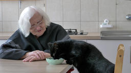Old woman and a black cat. Feeding time Footage