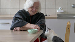 Old woman is giving dry cat food for a cat. Cat takes the cat food and escapes Live Action