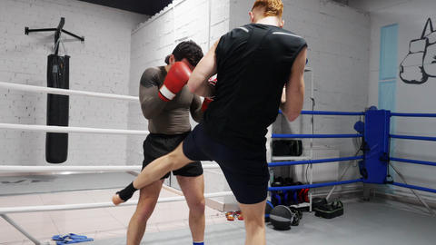 Two ma boxer training leg kicks while boxing in fight ring. Athlete man training Footage