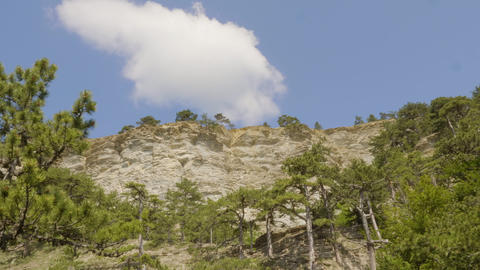White cloud floating above rocky cliff covered green trees. View from below Footage