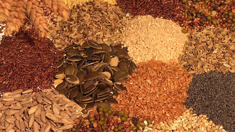 Assortment of edible seeds Live Action