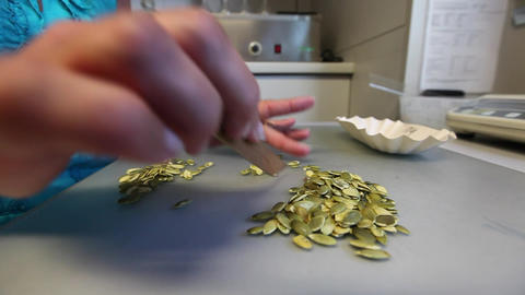 Woman Sorting Pumpkin Seeds stock footage