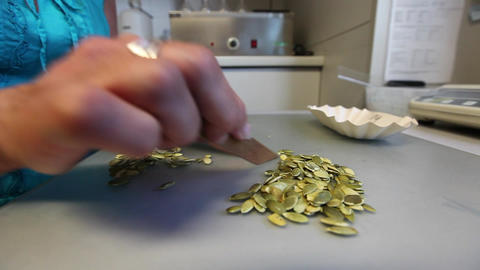 Woman sorting pumpkin seeds Stock Video Footage