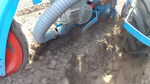 Planting a new maize crop Stock Video Footage