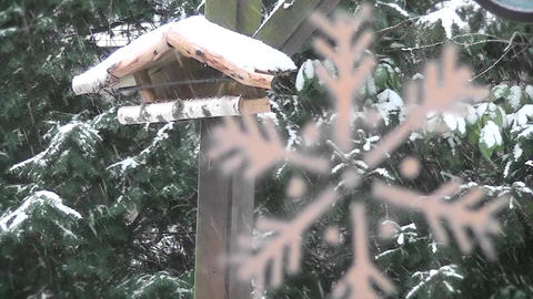 Winter scene with a snowflake Stock Video Footage