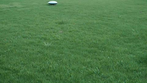 panoramic of beautiful Lamps in grass lawn Stock Video Footage
