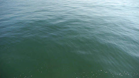 Water ripples surface.sea ocean wave.timelapse Stock Video Footage