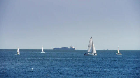 Sailboat sailing in sea,water surface Stock Video Footage