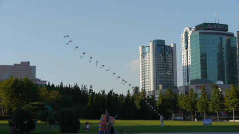 city life,People play kite on square,relying on high-rise... Stock Video Footage