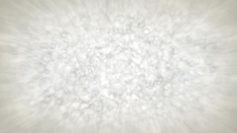 Lather Stock Video Footage