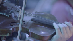 Playing the violin. Close-up Footage