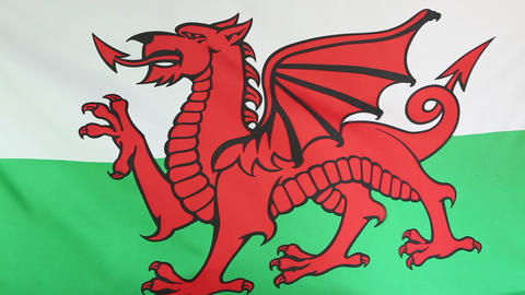 Textile flag of Wales Live Action