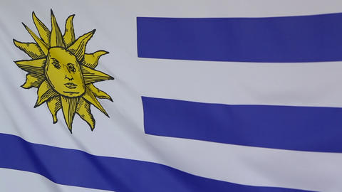 Textile flag of Uruguay in slow motion Footage