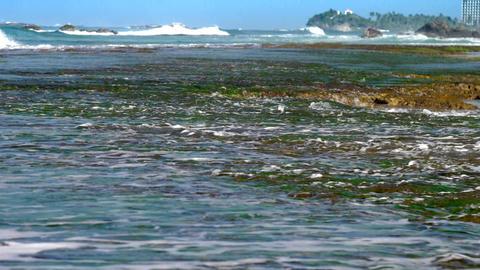 ocean waves roll on coral reefs with seaweed near coastline Footage